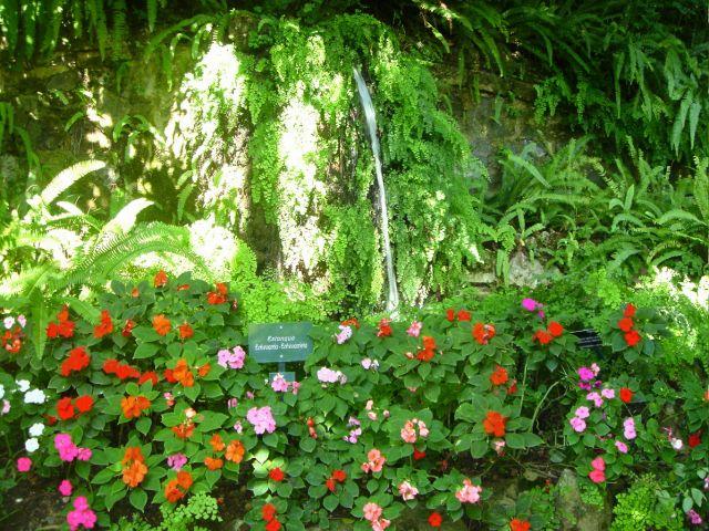 Jardin botanico de malaga fotos de vacaciones y viajes for Jardin botanico de malaga