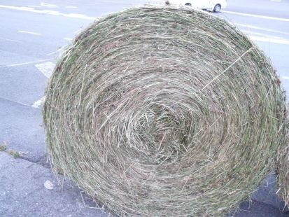 rueda ecologica