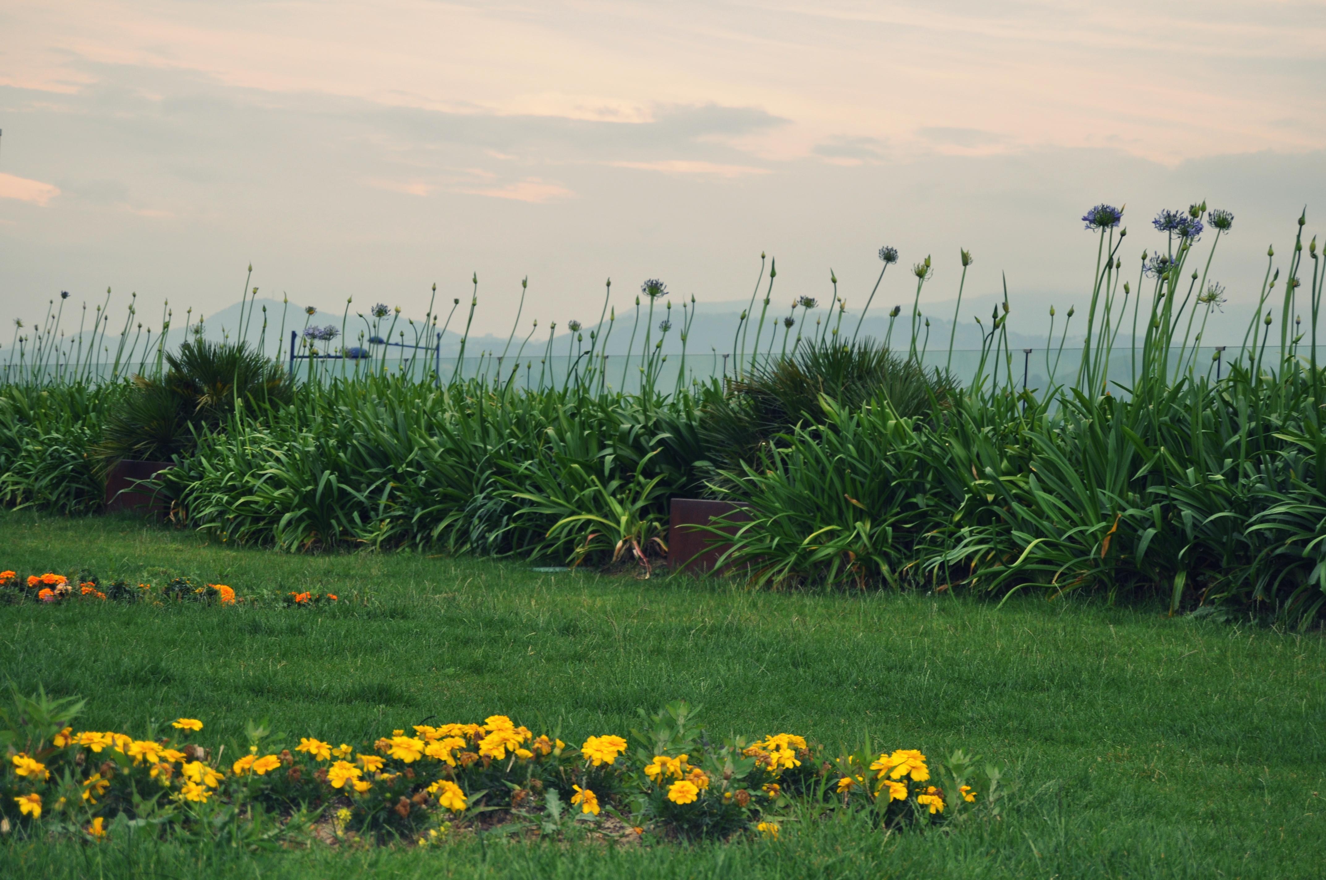 Jardin del ballonti fotos de fotos de portugalete for El jardin portugalete
