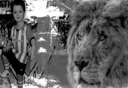 La furia de los leones no tiene l�mites