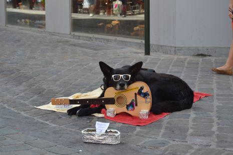 Artista callejero en Bruselas