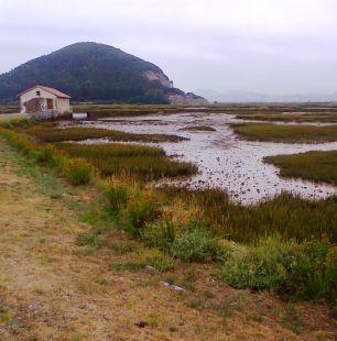 Molino de mareas desde año 1.047