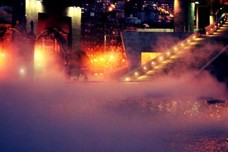 La araña entre nieblas.